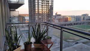 Executive Furnished room for rent in large downtown condo