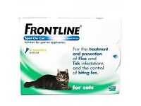 FRONTLINE Spot On for Cats, 6 Pipettes