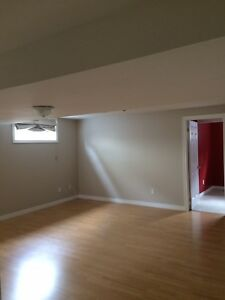 Large, Bright & Clean1 Bedroom Apartment