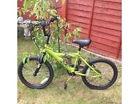 Boys BMX Green bike