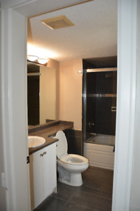 3 Bedroom Basement suite in Surrey available August 15