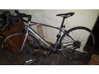 Specialized Dolce Silver