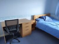 Double room in friendly house above Kemptown (£120pw all bills included)