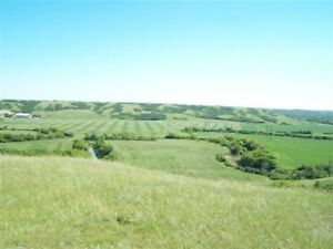 1/2 Acre Lots in Canyon Creek - Lumsden