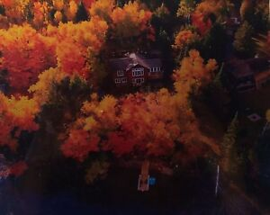 Muskoka Waterfront Year Round Cottage for Rent