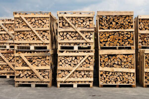 $300 CORD IN PALLETS OR $259.99 LOOSE FIREWOOD DELIVERY