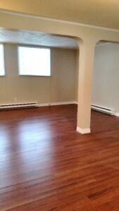 Bright, Spacious 2 Bedroom Basement Apt -Available Sept. 1, 2017