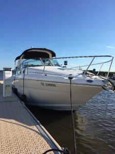 Sea Ray Sundancer 300 2002
