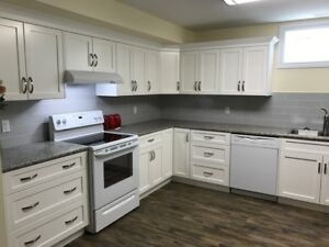 1 bedroom, new and immaculate basement suite, available immediat