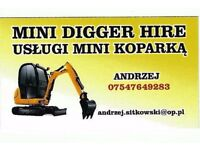 Mini digger and driver