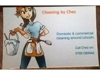 cleaner - lincoln