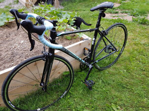 Lightly used women's 2015 Giant Avail 3 road bike