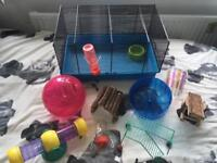 Hamster cage and accessories **BARGAIN**
