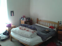 Large double room available in central Crookes for £300pcm (ideally, 1st Aug but negotiable)
