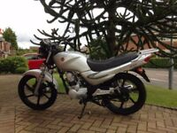 Sym XS 125cc motorbike (Very low miles)