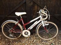 1970`s GIRLS RALEIGH CASCADE