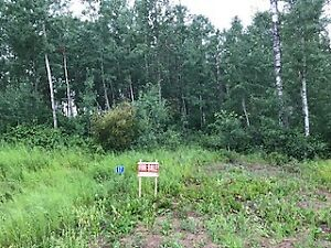 Beautiful wooded corner acreage lot - Bilby Common Estates
