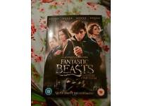 Brand new copy of fantastic beast dvd