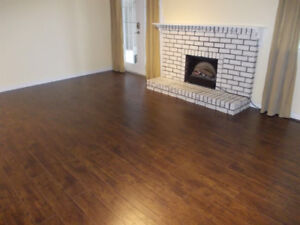 2 bedrooms and den  basement suite available for rent