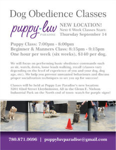 Puppy & Beginner Obedience Classes Start Thursday September 14th