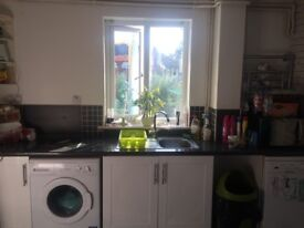 Single room to let/rent chelmsford