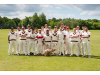 Joing Our Cricket Team - Wimbledon / Raynes Park