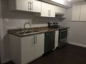 Brand New secondary suite close to west ED mall