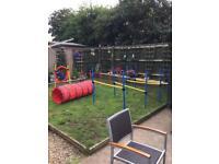 Dog agility course set