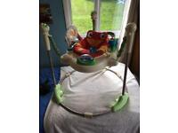 Rainforest Jumperoo baby