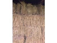 This Years Hay Bales For Sale