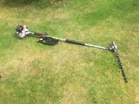 Pole Hedge Cutter HCA 2400