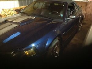 2003 GT Ford Mustang convertible