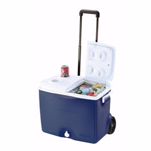 2 x 45 Qt Rubbermaid Coolers with wheels