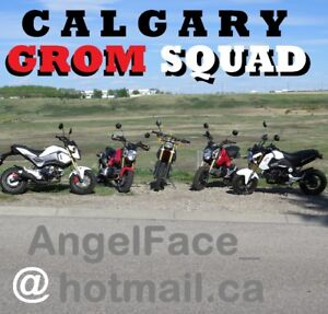 Calgary GROM SQUAD ... willing 2 TEACH Members how 2 RIDE 4 FREE