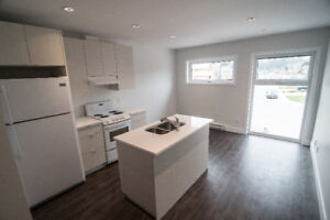 Brand New Bright 2nd Story 1 Bedroom Suite - Squamish