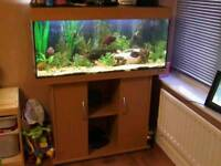 JEWEL RIO 180 LITRE FISHTANK IN BEECHWOOD WITH MATCHING CABINET IN EXCELLENT CONDITION
