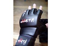 Aasta MMA gloves, 4oz. Good condition.