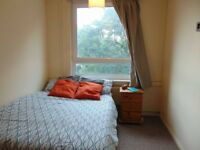Double bedroom in a friendly flat bills includ