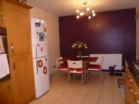 Furnished Double room in lovely shared house with great garden & 2 cats