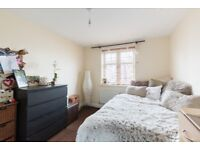 Edgbaston/Bearwood - Ideally female for Ensuite Room in a beautiful modern detached household