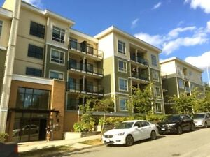 Bright 1-Bed Condo. Walk to Gateway Skytrain. Parking available.