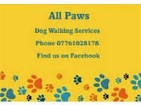 All Paws Dog Walking Services