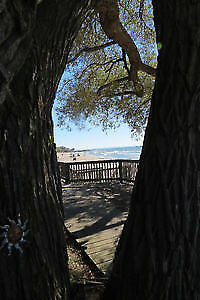 Beach Lakeview Cottage Available Sherkston Shores