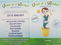 Cleaning company put the shine back in your home and a smile on your face with Genie in a bucket