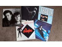 12 inch vinyl records