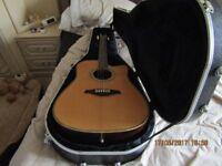 Vintage Acoustic Guitar In Hard Case