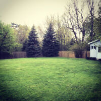 Lawncare and Garden Services by McArthur's Gardens and Lawncare