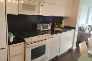 Fully Furnished Short Term Rental in Upscale Downtown Building