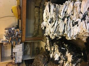 Whiterock snowgoose windsocks for sale