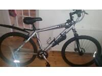 Silver diamondback bike